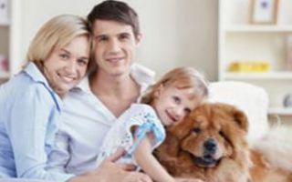 Позитивная роль домашних животных сильно преувеличена
