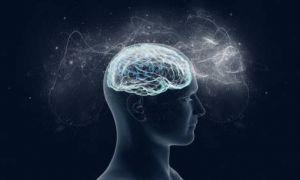 Всего за 10 минут тренировок можно улучшить работу мозга