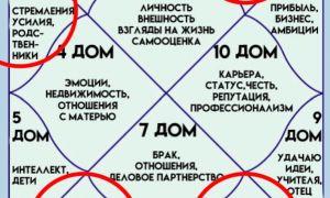 Дома в астрологии: история и значение